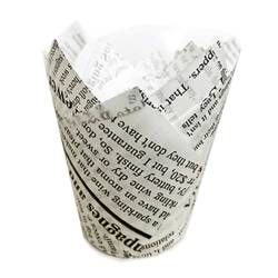 24 NEWSPAPER CAPSULES FOR...